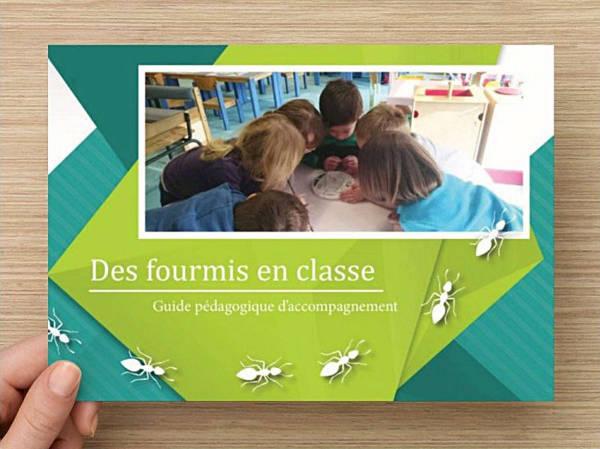 Kit Pédagogique Fourmis Culture - Des Fourmis en Classe