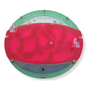 Fourmiculture® Hyperfiltre pour Minora – filtre rouge