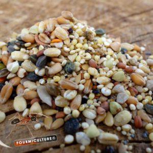 Messor Mix – Mélange de graines pour Messor